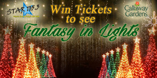WIN A FAMILY PACK OF TICKETS!