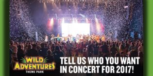 Wild Adventures Concert Survey